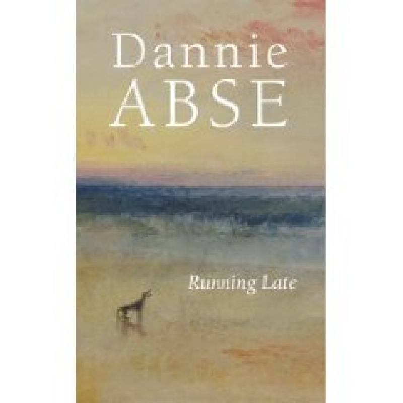 how larkin and abse portray the Because of this reality, the reader can see what larkin is really trying to convey in the poems is shown and we understand what was meant by the illusion in the poem sunny prestatyn, larkin uses harsh reality to show the depth of the illusion.